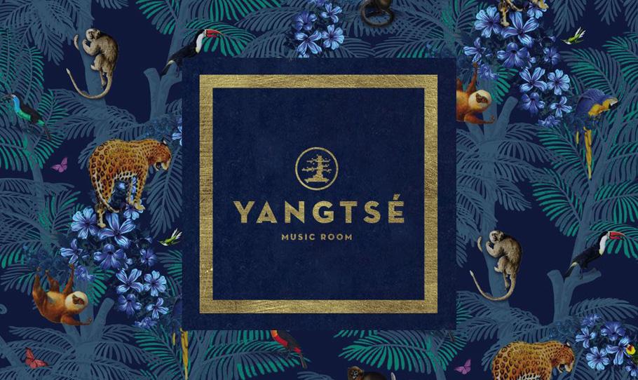 Discoteca Yangtsé Music Room, música, moda y tendencias en una misma sala